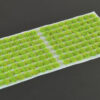 Bright Green 2mm SMALL