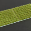 Dry Green 6mm SMALL
