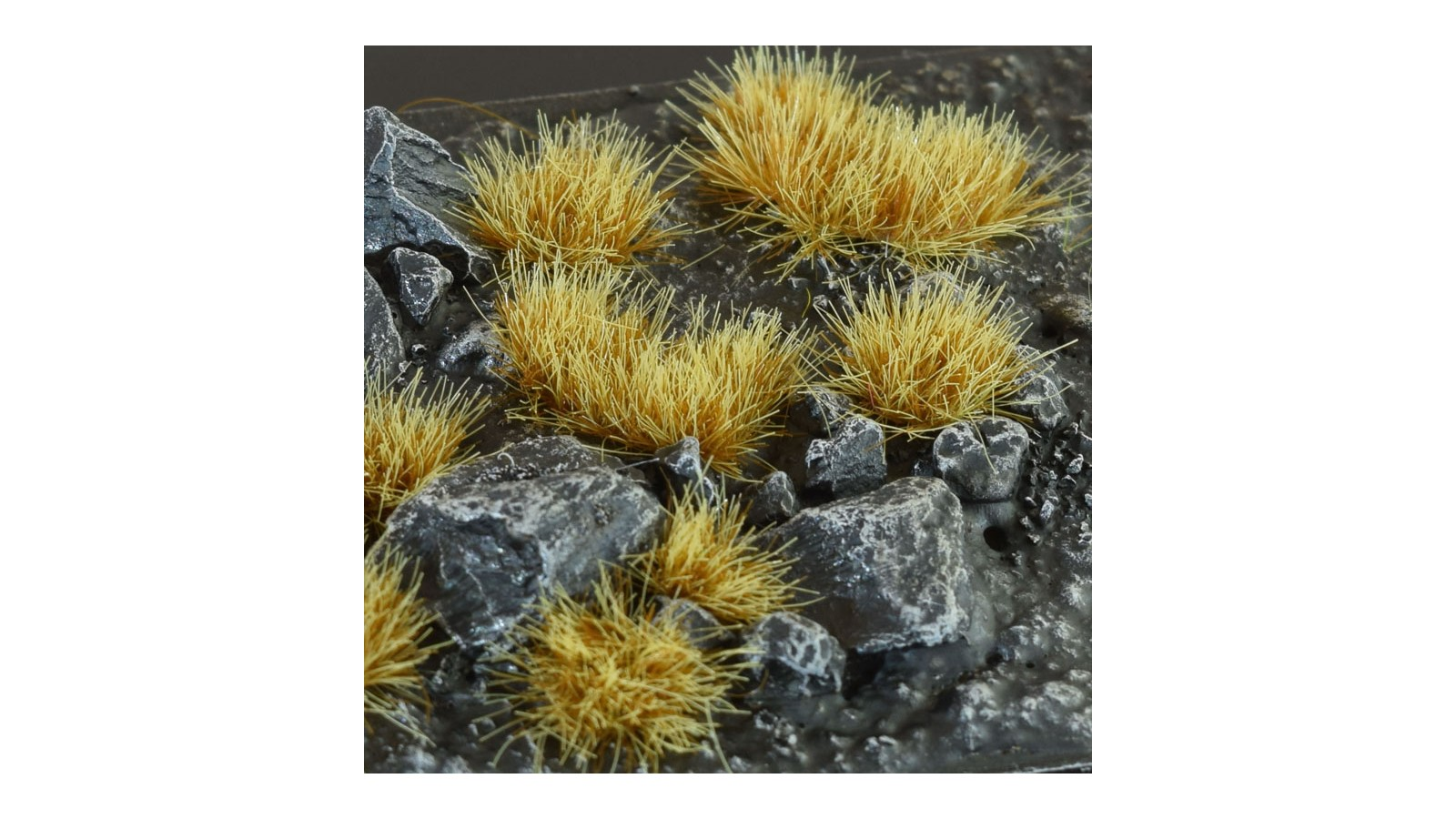 GG6-DT-small Drytuft (6mm)