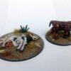 cattle_pair